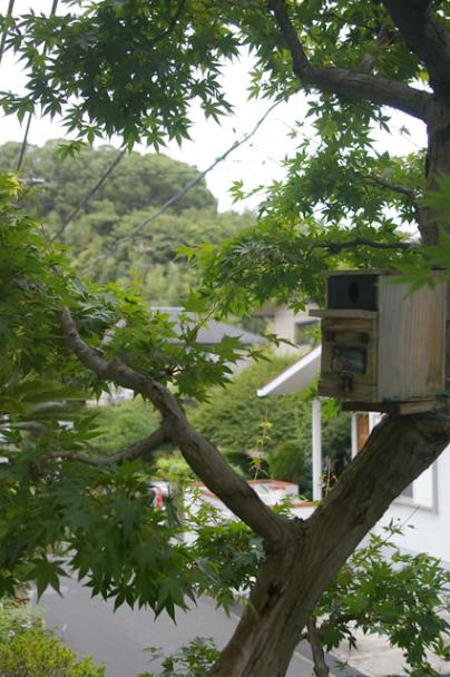 鎌倉スローライフ促進物件。
