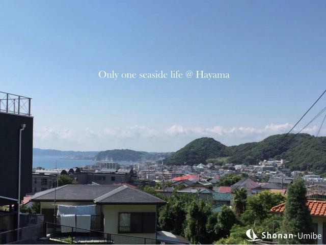 【葉山町堀内】|売地:3080万円~|丘の上の紫陽花と海