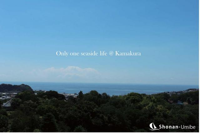 【鎌倉市鎌倉山】|土地:6980万円|120坪の敷地から見下ろす海