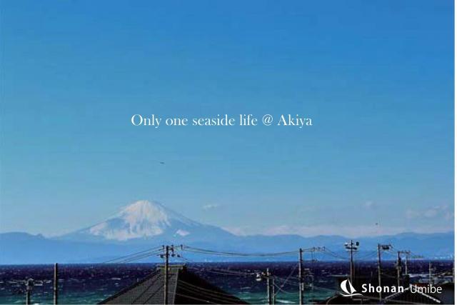 【横須賀市秋谷】|土地:2680万円|湘南の海を高台から望む土地