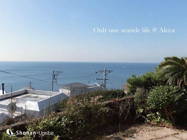 【横須賀市秋谷】|売地:3980万円|それでも海が見たい!