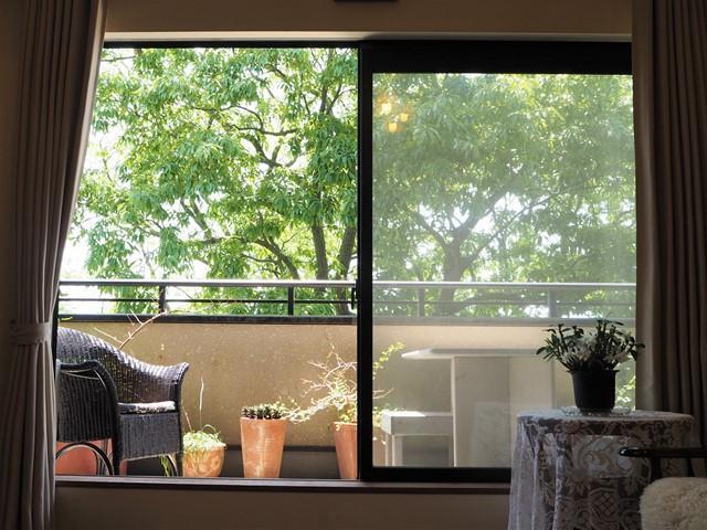 鎌倉市鎌倉山 中古戸建 4880万円 四季折々の窓辺の景色
